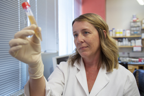 Megan Smithey was surprised by the effective immune response of old mice with CVM. Subsequent research will focus on determining how CVM strengthens the immune system.