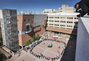 Health sciences students and employees come together to form a human chain on Solidarity Day.