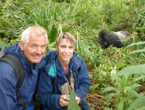 Dieter and Netzin Steklis observe a silverback gorilla in Rwanda. The Steklises often reference their primate field work in their UA general education class on fatherhood.
