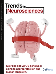 Research by UA faculty members Gene Alexander and David Raichlen is featured on the cover of the May issue of Trends in Neurosciences.