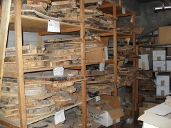 Creasman hopes to eventually create an online database for the lab's collection.