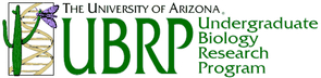 The UA's grant-supported UBRP program allows undergraduates - and some high school students - the chance to conduct original research early in their academic careers.