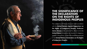 Adopted in 2007, the UN Declaration on the Rights of Indigenous Peoples establishes a universal framework of minimum standards for the survival, dignity, well being, and rights of indigenous peoples around the world.