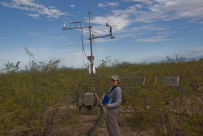 Shirley Papuga at the Santa Rita Creosote Flux Tower (Photo by Mark Heitlinger)