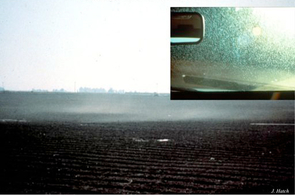 (Click image to enlarge) In the early 1990s, clouds of whiteflies ravaged cotton and vegetable fields, gumming up windshields of vehicles traveling through the area (inset). (Photo: J. Hatch)