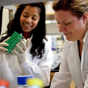 It's an amazing opportunity to be involved in original and ongoing research at one of the nation's top-ranking research institutions, and still only a high school student. Each year, dozens of Arizona high school students are given this chance through the KEYS program. (Photo courtesy of the KEYS program)
