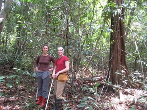 Julie Messier and Vanessa Buzzard wait to start a new transect in a Panama forest, holding a 2 meter stick as a guide. (Courtesy: Brian Enquist)