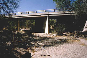 Bats  commonly roost under bridges like this one, over a small wash in northeastern Tucson (Photo: Sandy Wolf)