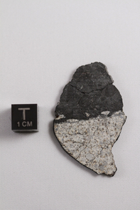 This image shows a meteorite fragment found after a 17-20 meter asteroid disrupted in the atmosphere near Chelyabinsk, Russia on Feb. 15, 2013. It shows a beautiful contact between impact melt (dark material at top of image) and chondritic host (light material at bottom of image). The researchers argue these impact melts were likely created when high-velocity debris from the moon-forming impact hit the parent asteroid of the Chelyabinsk bolide and heated near-surface material. (Photo: Vishnu Reddy)