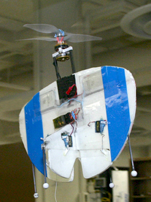 UA's vertical takeoff MAV takes a flight around a lab in the Aerospace and Mechanical Engineering Building. The contra-rotating propellers are visible at the nose, just above the two electric motors. The plane's batteries include the two rectangular objects near the leading edge of the wing and a third battery that powers the radio, which is the black device in the middle of the wing. (Photos by Matt Brailey)