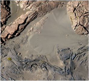 A high-resolution orthophoto of the margin of the December 1974 flow. If you look carefully, you can see footprints in the sand leading away from the edge of the lava flow. (Image: Stephen Scheidt)
