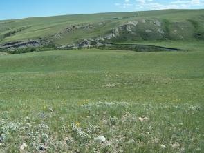 Grasslands on the Blackfeet Reservation in northern Montana. (Photo: María Nieves Zedeño)