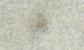 "(Click to enlarge) The HiRISE camera on NASA's Mars Reconnaissance Orbiter took this image of the Phoenix Mars Lander on its frost-free site on the northern plains of Mars in June 2008.  Although the soil surrounding the lander appears much brighter than the frost-covered surface in the July 2009 image, the frost-free soil is actually darker. The brightness and darkness of the surfaces in the two photos is a result of how the images are processed. The frost picture was ""stretched"" to heighten contrast, so frost-covered soil appears darker."