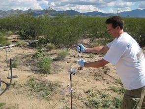 University of Washington scientist Jeff Riffell manipulates a chemical odor plume source for measurements by proton transfer reaction mass spectrometry amongst a creosote bush habitat. (Photo courtesy of Leif Abrell)