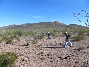 Researchers do an archaeological survey in search of trails to document. Once a trail was found, researchers would trace it as far as it would lead them. (Photo courtesy of T.J. Ferguson)