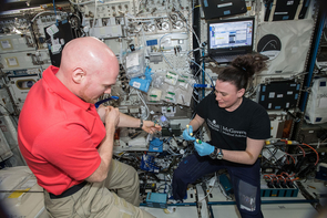 European Space Agency (ESA) astronaut Alexander Gerst and NASA astronaut Serena Auñón-Chancellor, during a functional immune blood sample draw at the Human Research Facility in the International Space Station's Columbus Module. (Photo: NASA)
