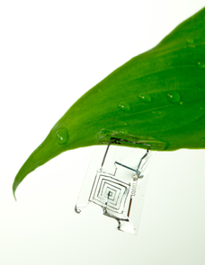 Biodegradable electronics could help reduce waste streams from obsolete electronic devices