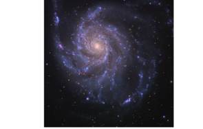 An optical image of galaxy M101 obtained by Adam Block with the UA's Mt. Lemmon Sky Center.