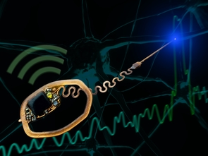 The device uses light to record individual neurons. (Photo: College of Engineering)