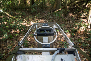 A lidar instrument sends laser pulses skyward. The laser pulses reflect off leaves; a sensor measures the time for the reflections to come back, and from that, the instrument can build a two-dimensional slice of the rainforest canopy. (Photo: Marielle Smith)