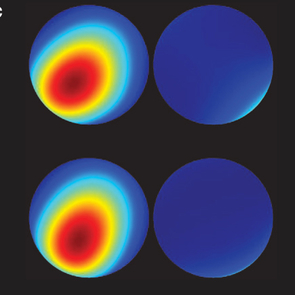"(Click to enlarge) This image shows the kind of pictures Jessen's team produces with tomography. The top two spheres are from a selected experimental snapshot taken after 40 cycles of changing the direction of the axis of spin of a cesium atom, the quantum ""spinning top.""    The two spheres below are theoretical models that agree remarkably with the experimental results."