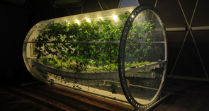 The 18-foot long, 7-foot diameter lunar greenhouse chamber is equipped as a prototype bioregenerative life support system. (Photo by Gene Giacomelli/Department of Biosystems Engineering)