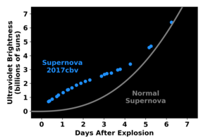 "Smoking gun: Unlike ""regular"" supernovae, whose change in ultraviolet brightness follows the gray curve, this one increased in brightness faster over the first two days, before slowing down (blue curve). This bump in the light curve likely reflects the slamming of material from the exploding white dwarf into a companion star. (Credit: Griffin Hosseinzadeh)"