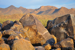 In Arizona's Saguaro National Park, Signal Hill Trail leads to petroglyphs by the ancient Hohokam people, who sustained themselves in the desert by drawing from the Salt and Gila rivers.