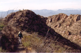 Hiking the popular Hugh Norris Trail through the Tucson Mountains, about two miles from the trailhead. (Photo: Ed Stiles)