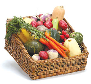 People who lease garden plots will be able to grow all kinds of fresh foods.