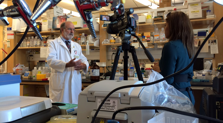 Dr. John Galgiani is interviewed about his research in his lab at the UA's BIO5 Institute. (Photo: David Mogollon)
