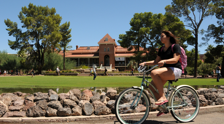 In a recent Undergraduate Campus Climate Survey, UA students overwhelmingly said they are receiving a quality education and are satisfied with the quality of faculty instruction. They said the UA provides them with a challenging academic experience. (Photo by Norma Jean Gargasz/UANews)