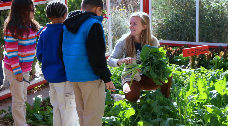 The Community and School Garden Program, housed in the School of Geography and Development, is one of the many outreach programs that will be supported by the new UA Center for Regional Food Studies. (Photo: Moses Thompson)