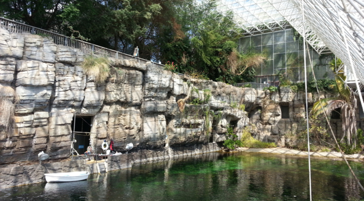 The ocean habitat under the Biosphere 2 glass dome once was a thriving Caribbean coral reef. (Photo: Daniel Stolte/UANews)