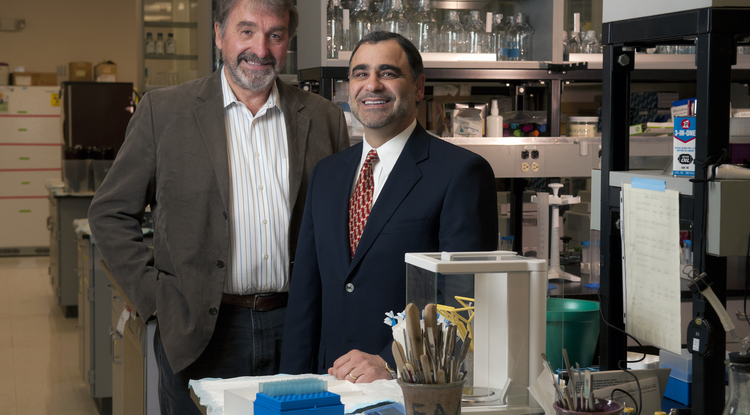 Eugene Gerner (left) and Jeffrey Jacob in the lab. (Photo by Chris Mooney)