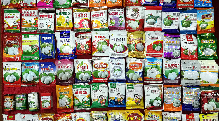 Seed packages containing various cotton seed mixes for sale in China (Photo: Peng Wan)