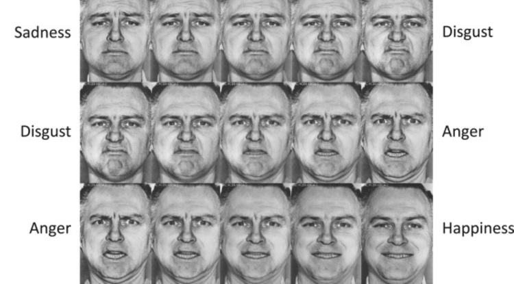 Study participants were shown faces and asked to identify the emotion. (Image: Neurobiology of Sleep and Circadian Rhythms)
