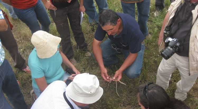 A Portuguese farmer explains the impact of his conservation measures to other farmers as well as ecologists and soil scientists. Photo by Barron Orr