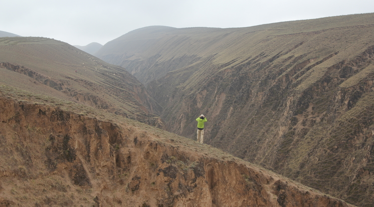 Geoscientist Fulong Cai stands on a linear ridge on top of China's Loess Plateau and looks across a river valley at another of the plateau's linear ridges. The high hills in the far background are on the edge of the plateau, which drops about 1,300 feet to the Mu Us Desert to the northwest. (Photo credit: Paul Kapp/ UA Department of Geosciences)