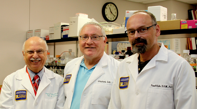 UA researchers (from left) Dr. Fayez K. Ghishan, Eugene A. Mash Jr. and Pawel Kiela.