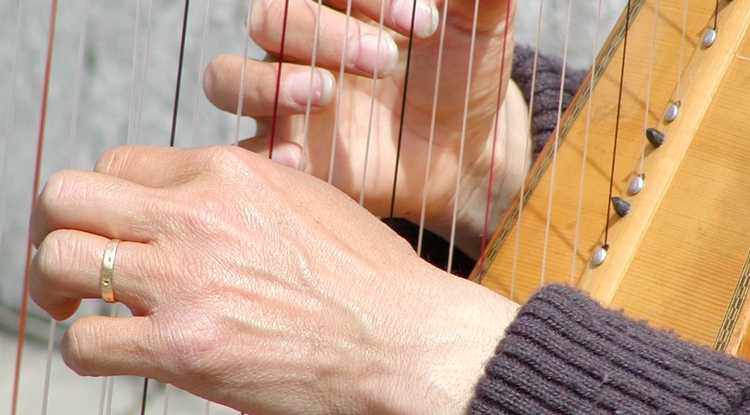 A study at The University of Arizona Medical Center is measuring the physical effects of harp music on patients in the intensive care unit.