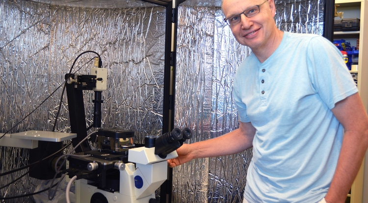 Henk Granzier's research group uses an atomic force microscope sensitive enough to hold onto a single titin protein molecule and measure the tiny forces that occur during stretching and contracting under various conditions. (Photo: Katie Maass/Sarver Heart Center)