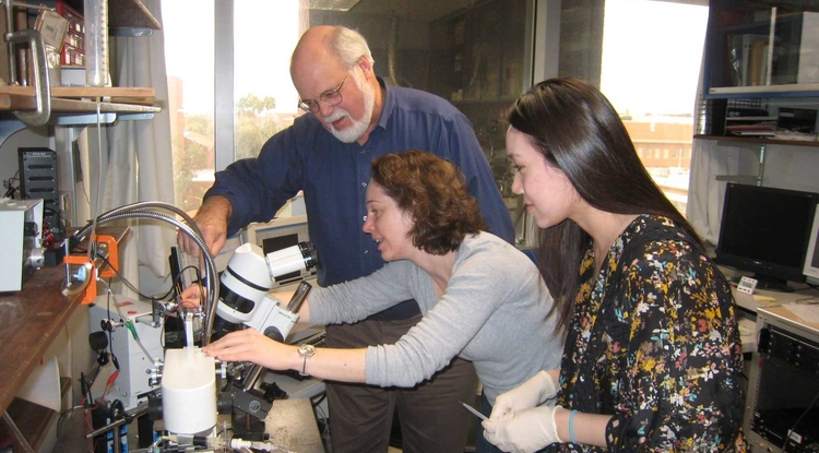 Regents' Professor John G. Hildebrand working with a former postdoctoral fellow and an undergraduate researcher in his lab. (Photo: Becca Van Sickler)