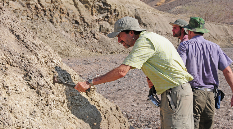 Professor Andrew S. Cohen (left) and ASU co-principal investigators Chris Campisano (center) and Ramon Arrowsmith (right) examine outcrops near the Northern Awash River drill site in Ethiopia. (Photo: Roy Johnson)