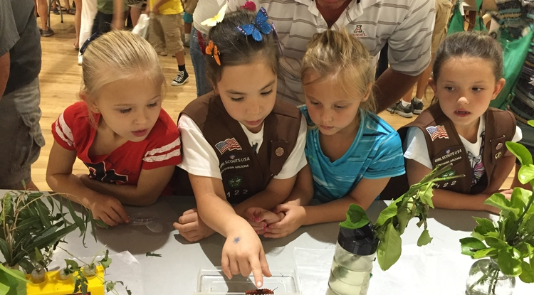 Anissa Aldecoa (second from left) shares her knowledge about insects with a group of children at the 2015 Arizona Insect Festival. (Photo: Vanessa Rivera Aldecoa)