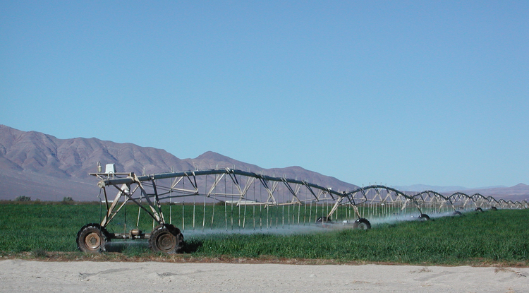 Irrigation in the Amargosa Desert on the California/Nevada border uses water from the Death Valley Regional Aquifer. (Photo courtesy of David Stonestrom/U.S. Geological Survey)