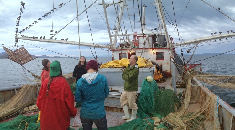 UA Arts, Environment and Humanities Network members Eric Magrane and marine conservationist Maria Johnson have been studying bycatch, the unwanted marine life caught in the nets of commercial fishers. Like other network members, Magrane and Johnson are trying to make environmental research more accessible to a general public. (Photo: Kelly Muller)