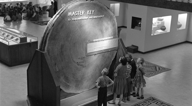 School children admire a piece of giant sequoia, which was on display at the Arizona State Museum for nearly 50 years.
