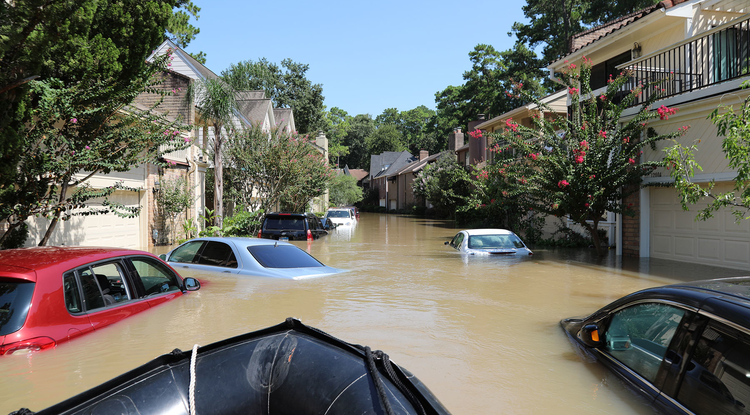 The Federal Emergency Management Agency's (FEMA) Urban Search and Rescue Virginia Task Force Two (VA-TF2) searched Houston neighborhoods on Aug. 31 for survivors after flooding caused by Hurricane Harvey. (Photo: FEMA News Photo)