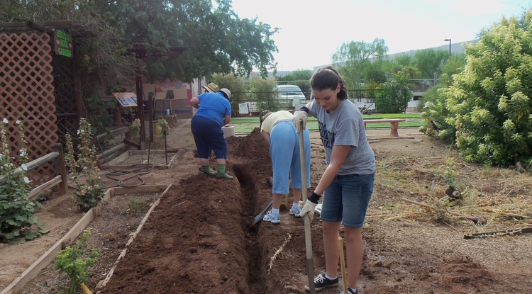 UA student Jill Hamilton works at the Maricopa County Extension's Outdoor Water Conservation Demonstration area to improve irrigation efficiency.